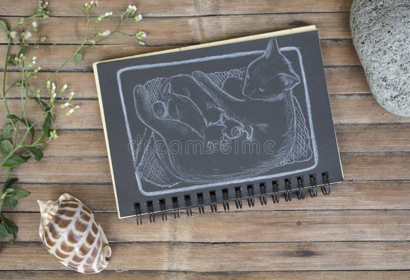 Chat avec l'illustration tirée par la main de bébés nouveau-nés Famille de chat par la craie blanche sur le papier noir images stock