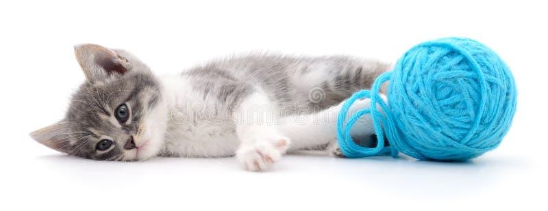 Chat avec la boule du fil photo stock