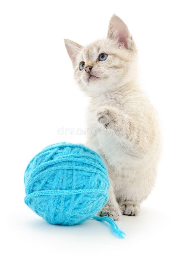 Chat avec la boule du fil photos stock