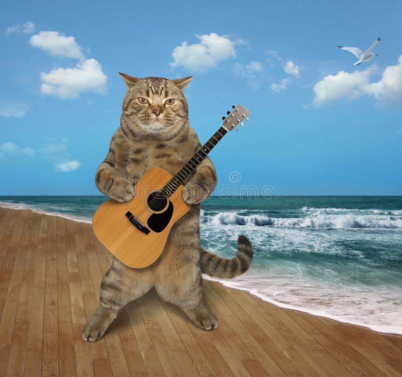 Chat avec la guitare sur la plage 2 image libre de droits