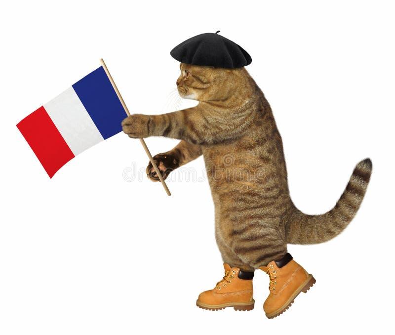 Chat avec le drapeau français images libres de droits