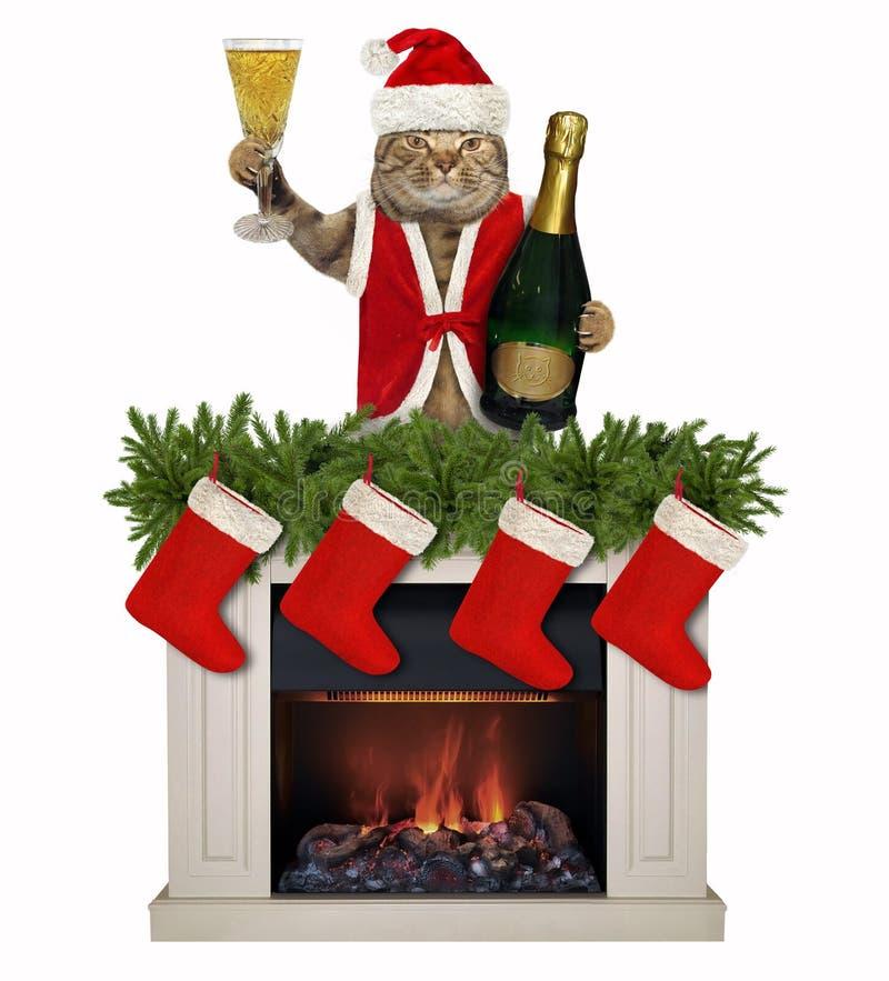 Chat avec un verre de vin près de la cheminée 2 image stock