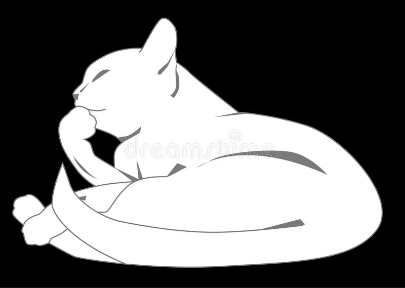 Chat blanc illustration stock