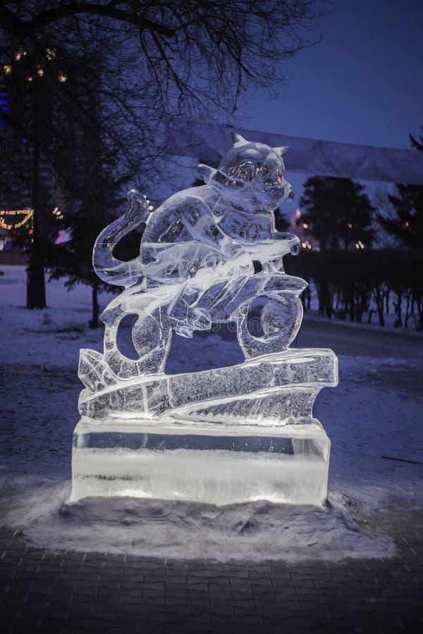 Chat brillé d'une glace images libres de droits