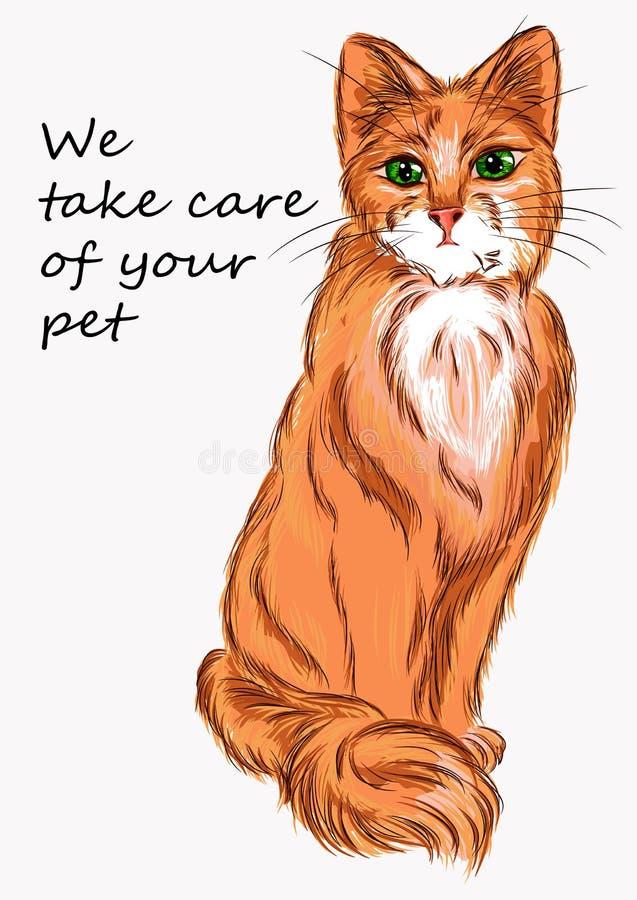 Chat d'illustration pour faire de la publicité des produits pour les animaux et le vétérinaire illustration stock