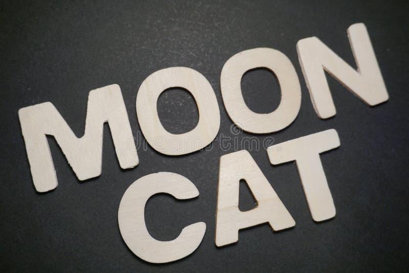 Chat de lune photos libres de droits