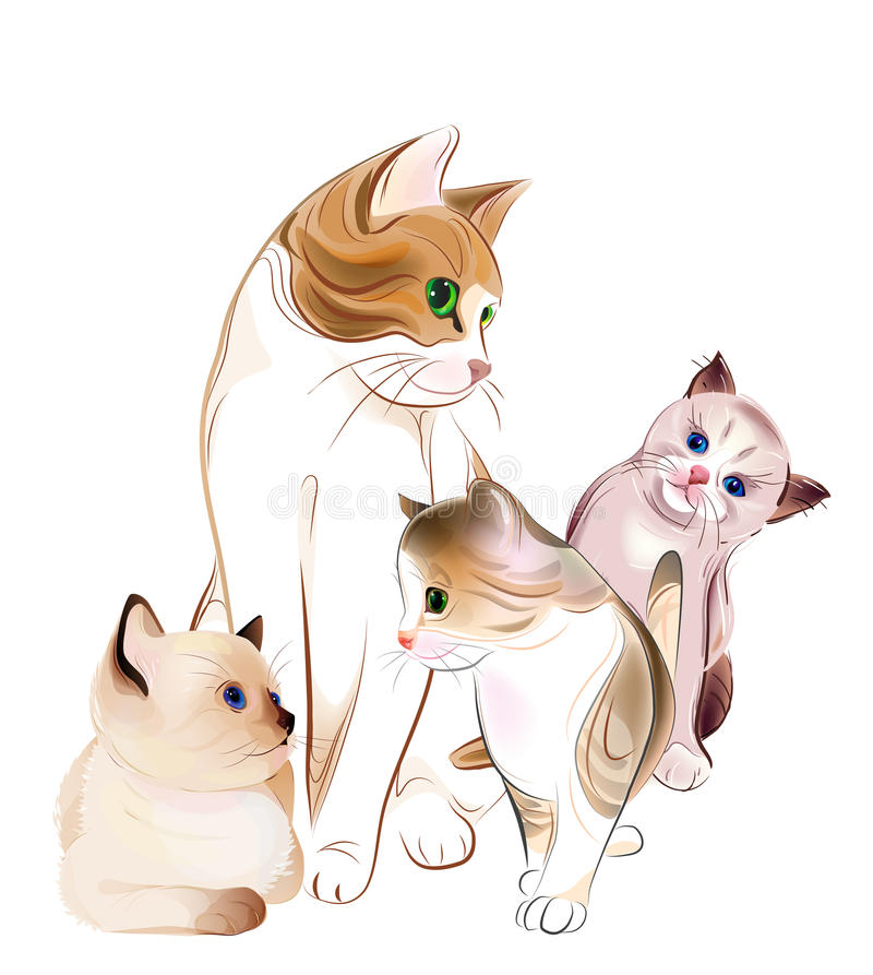 Chat et chatons. illustration stock