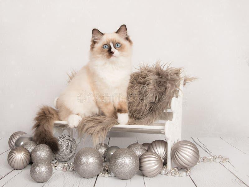 Chat mignon de bébé de poupée de chiffon sur une chaise avec les ornements argentés de Noël photos stock