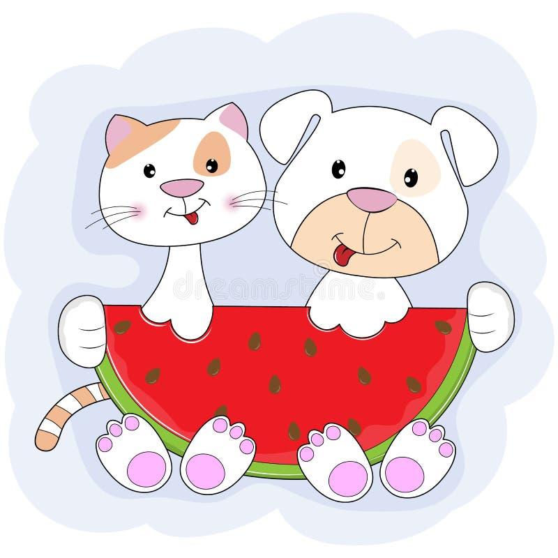 Chat mignon et chien mangeant la pastèque d'isolement avec le fond bleu illustration stock