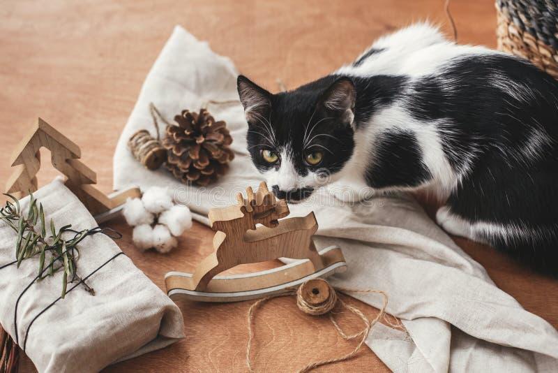 Chat mignon sentant le jouet rustique de renne et le cadeau élégant de Noël photos stock