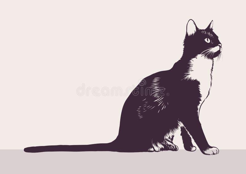Chat noir et blanc illustration de vecteur