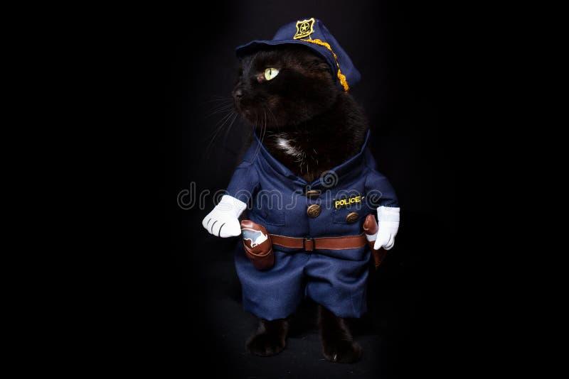 Chat noir habillé en tant que policier photos stock