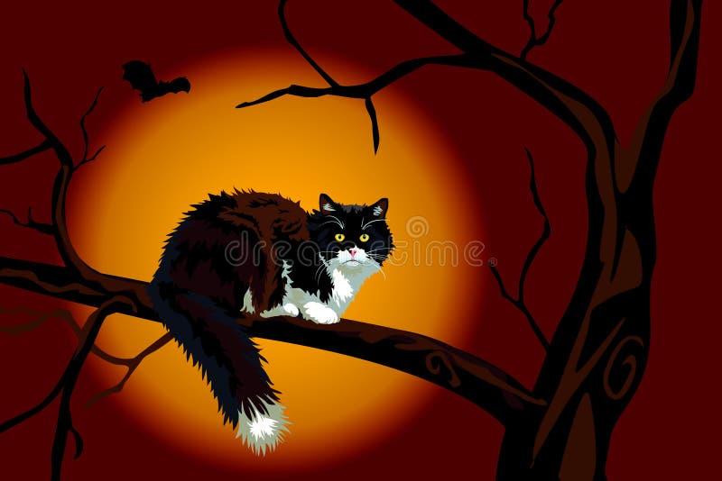 Chat noir sur le branchement mort la nuit de Veille de la toussaint illustration stock