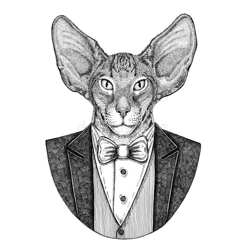 Chat oriental avec l'illustration tirée par la main animale de grand hippie d'oreilles pour le tatouage, emblème, insigne, logo,  image libre de droits