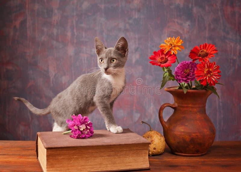 Chat posant à côté des fleurs images stock