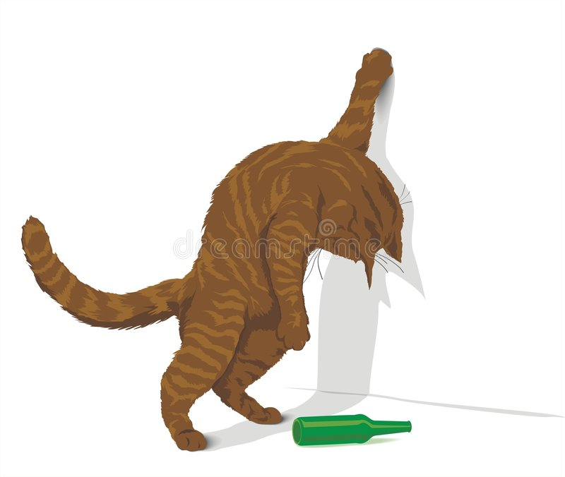 Chat rouge ivre illustration stock