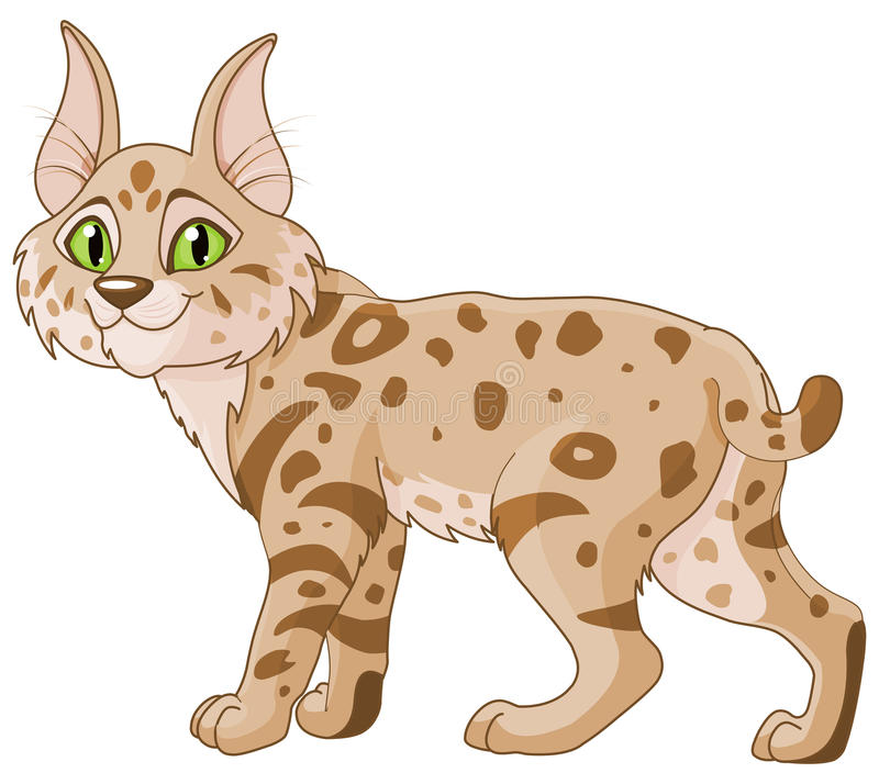 Chat sauvage illustration libre de droits