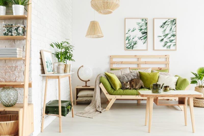 Chat sur le sofa en bois photo libre de droits