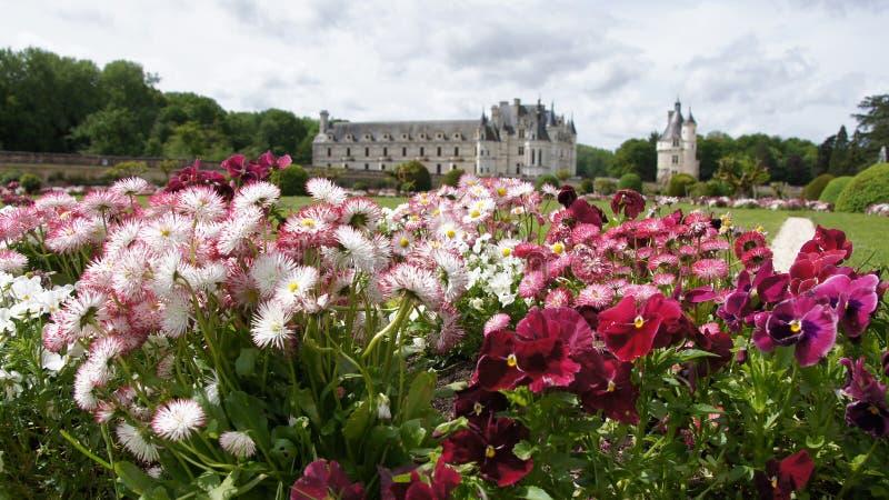 Chateau Chenonceau i Loire Valley royaltyfri bild