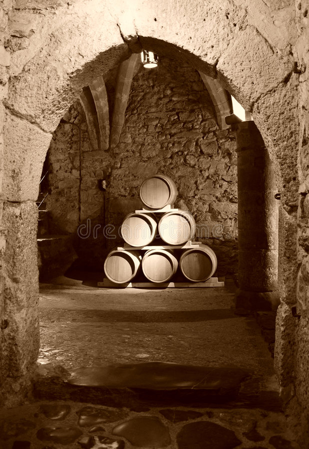 Free Chateau Chillon Royalty Free Stock Images - 5005019