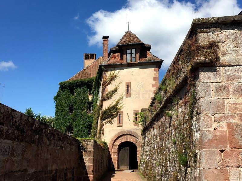 Chateau DE La Petite-Pierre & x28; Kasteel van La Tengere Pierre& x29; in een aardige de zomertijd, rond met de Vogezen du Nord N royalty-vrije stock foto's