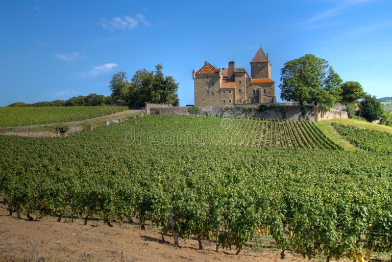 Chateau de Pierreclos, Borgogna, Francia immagine stock libera da diritti