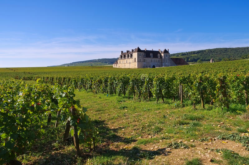 Chateau du Clos DE Vougeot, Kooi D ` of, Bourgondië stock afbeelding