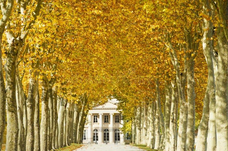 Chateau Margaux im Bordeaux, Frankreich lizenzfreie stockbilder