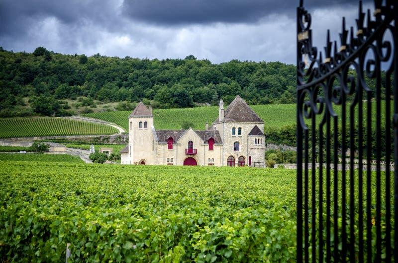 Chateau met wijngaarden, Bourgondië, Frankrijk royalty-vrije stock afbeeldingen