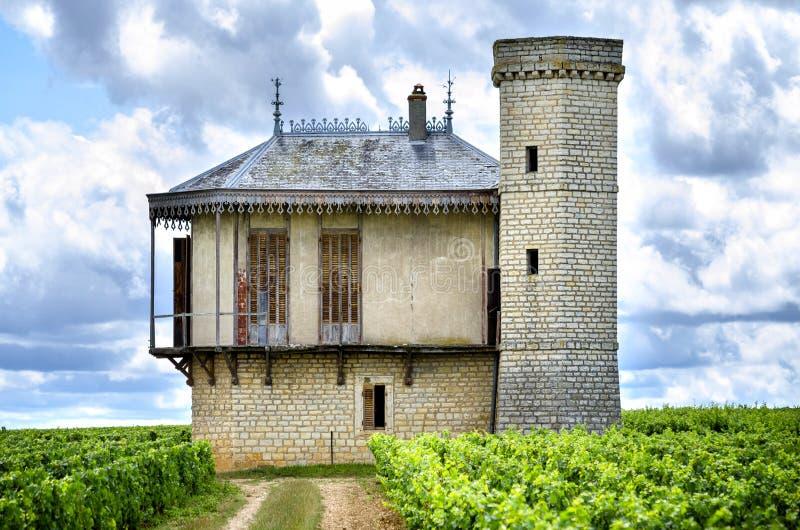 Chateau met wijngaarden, Bourgondië, Frankrijk royalty-vrije stock foto's