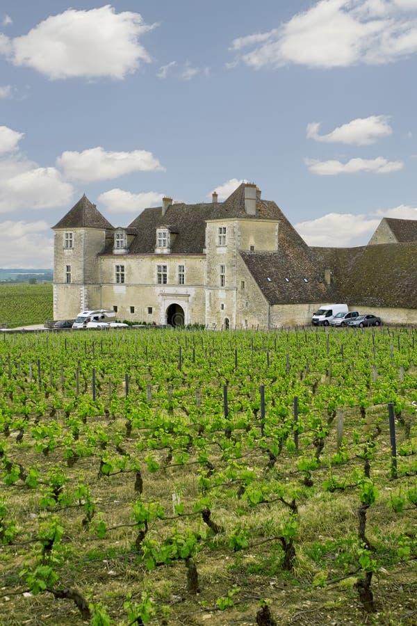 Chateau met wijngaarden, Bourgondië, Frankrijk stock foto