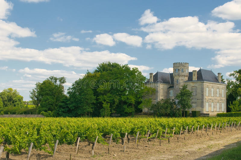 Chateau och vingård i Margaux, Bordeaux, Frankrike royaltyfria bilder