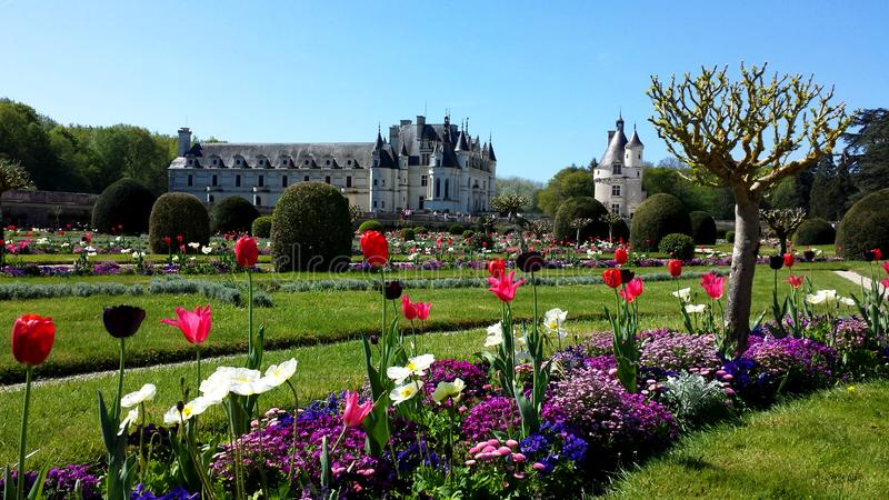 chateauchenonceau de france Loire Valley royaltyfri foto