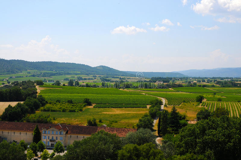 Chateauneuf du Pape. Landscape with vineyards of Chateauneuf du Pape, the very expensive vine royalty free stock photos