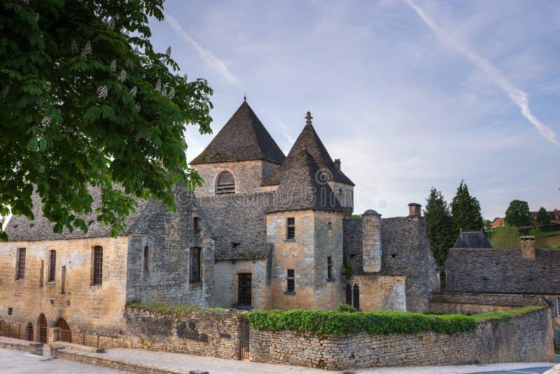 Chateaux przy St Genies fotografia royalty free