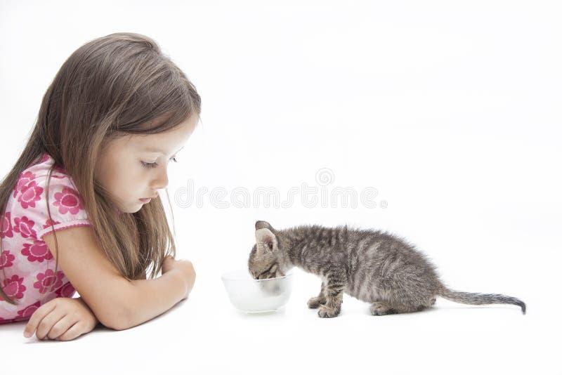 Chaton avec la petite fille photo libre de droits