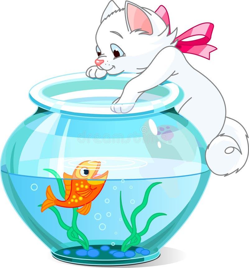 Chaton et poissons
