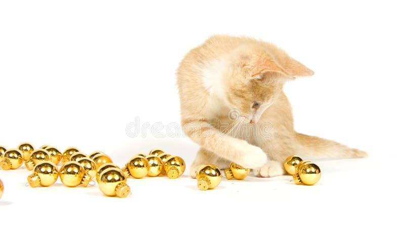 Chaton jaune jouant avec des décorations de Noël images stock