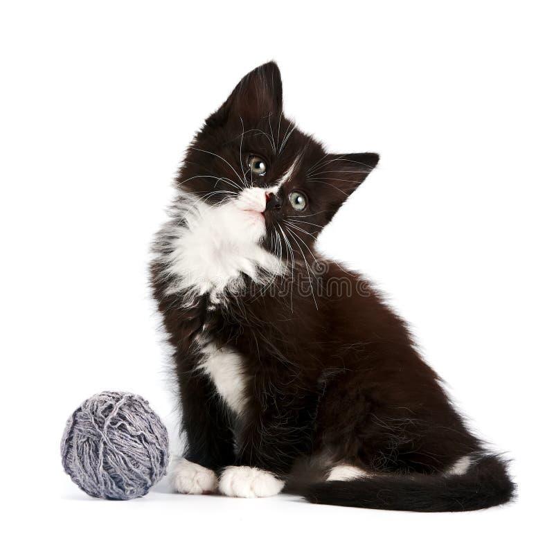 Chaton noir et blanc avec une bille de laine images stock