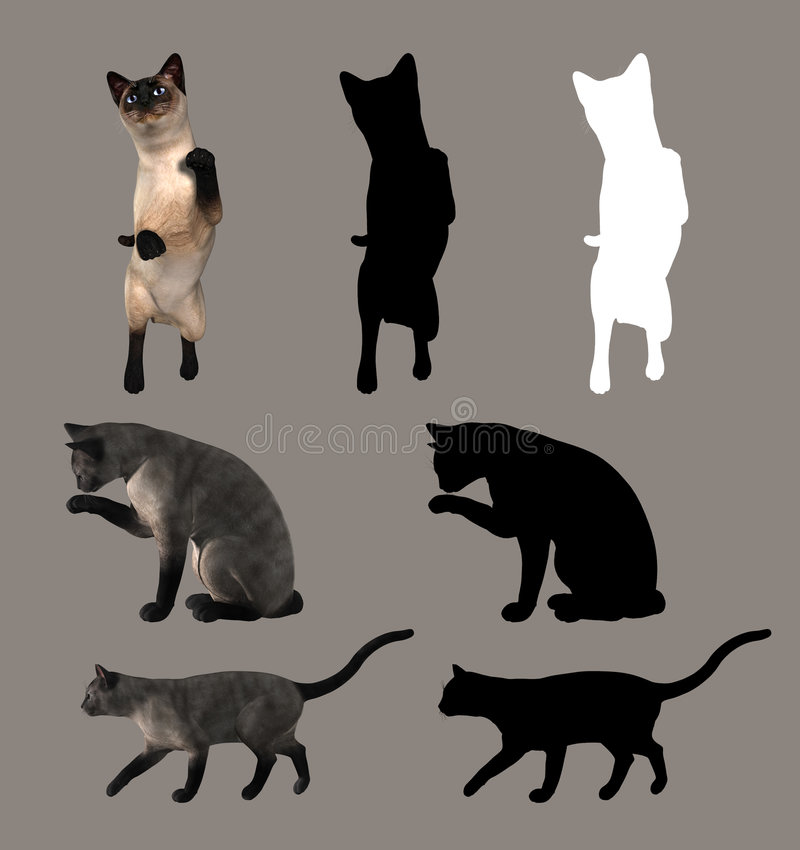Chats illustration libre de droits