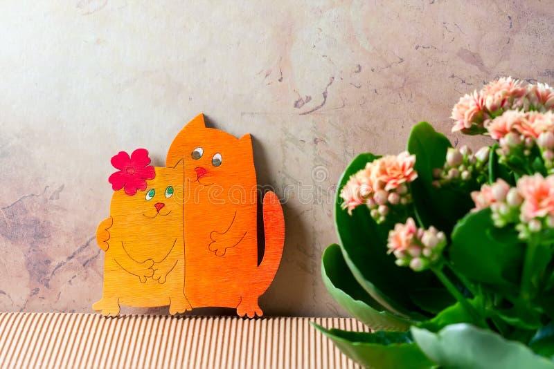 Chats amoureux, jour du ` s de Valentine Fleurs roses de kalanchoe photographie stock