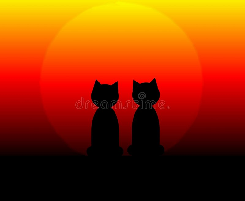 Chats au coucher du soleil illustration stock