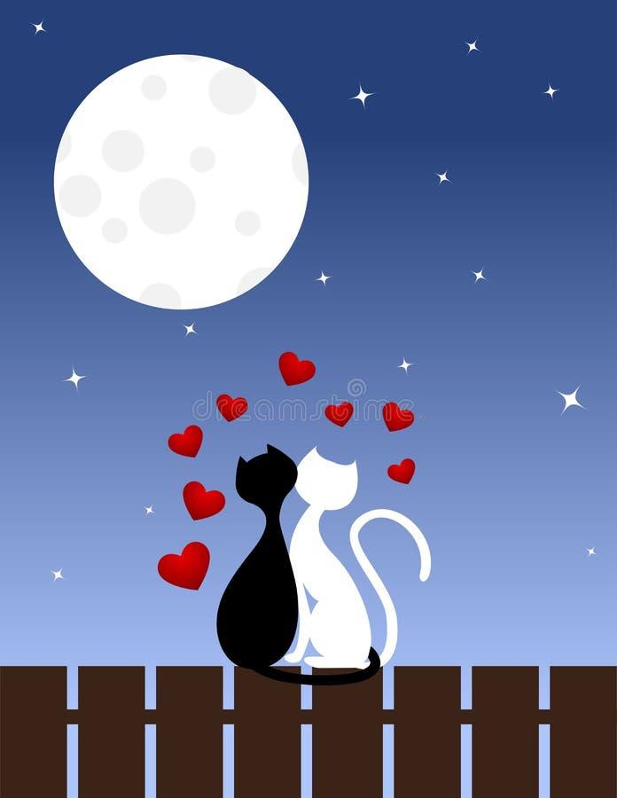 Chats Dans L Amour Photographie stock
