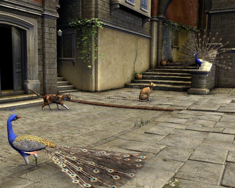 Chats et paons sur une rue méditerranéenne illustration stock