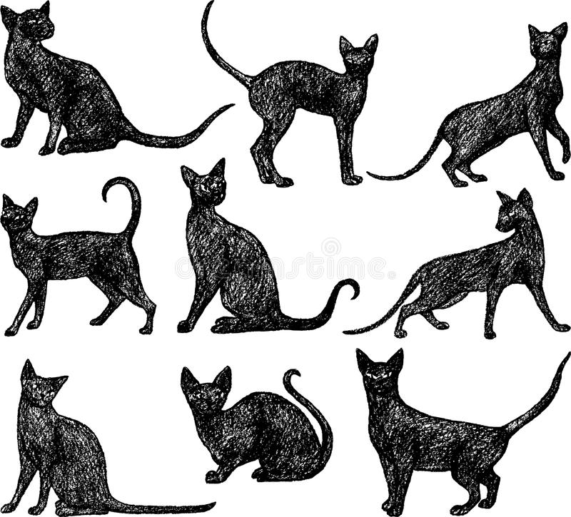 Chats noirs illustration libre de droits