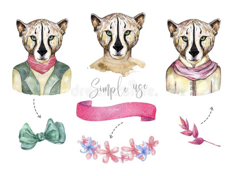 Chats sauvages d'aquarelle Le tigre, clipart (images graphiques) de léopard, animal sauvage, l'illustration de dessin de cheatah, illustration de vecteur