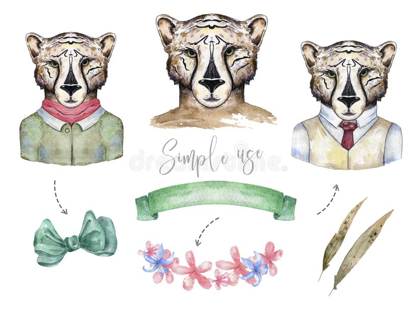 Chats sauvages d'aquarelle Le tigre, clipart (images graphiques) de léopard, animal sauvage, l'illustration de dessin de cheatah, illustration stock