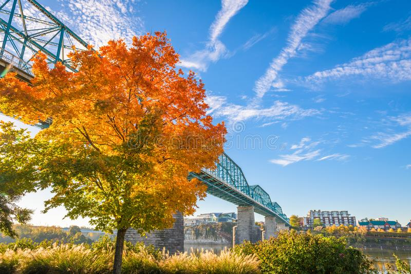 Chattanooga, Tennessee, USA Fall Season. Chattanooga, Tennessee, USA during fall season at Walnut Street Bridge royalty free stock images
