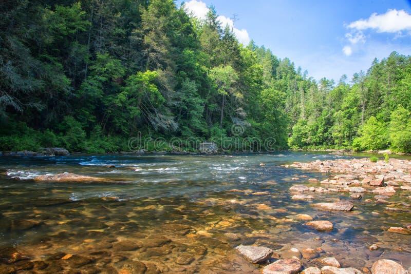 Chattooga狂放和风景河, GA/SC 免版税库存图片