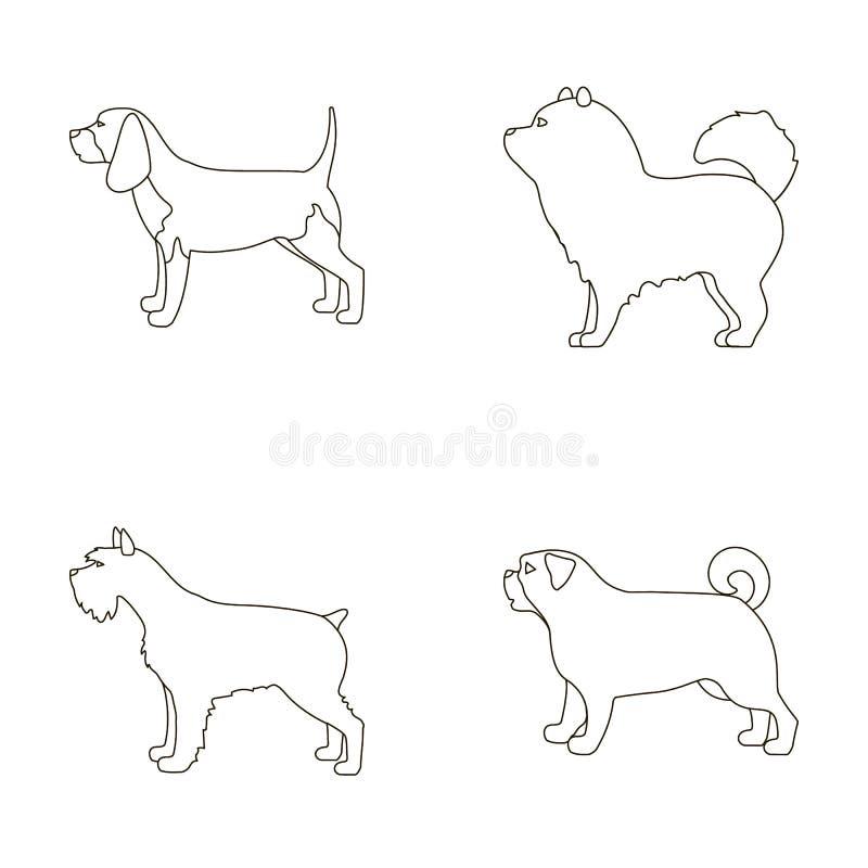Chauchau, levawa, schnauzer, pug De hondrassen plaatsen inzamelingspictogrammen in van de het symboolvoorraad van de overzichtsst vector illustratie